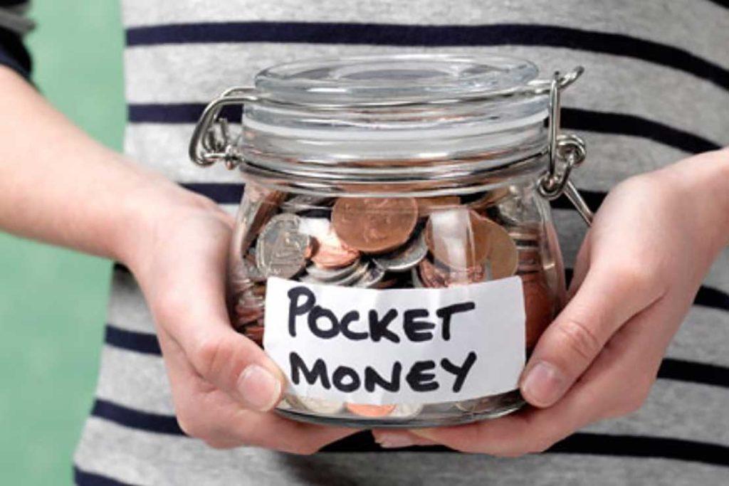 Web hosting pocket money